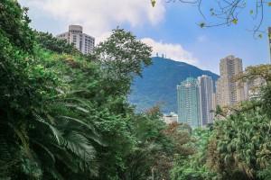 2016_PD_9_Hongkong-Review_1500